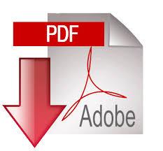 fichero pdf